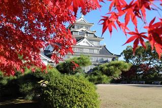 岡山城 (20)   by juson.tw