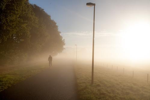 utrecht uithof mist misty morning autumn fall nature sunrise