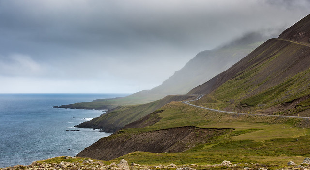 Winding Road into the Fog