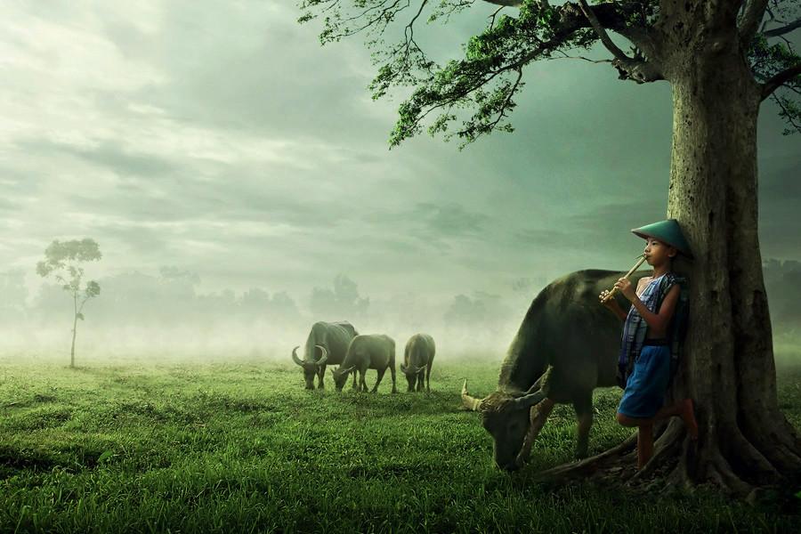 Hasil gambar untuk alam desa