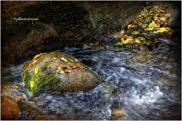 (0138/14) Pequeñas turbulencias en el rio