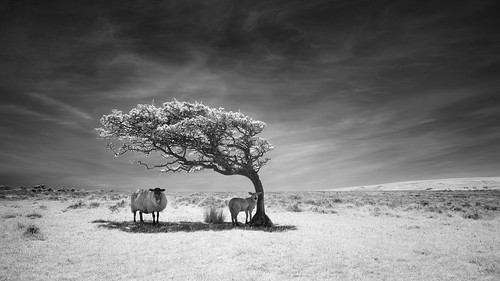 Refuge - Commended: Landscape Photographer Of The Year 2014