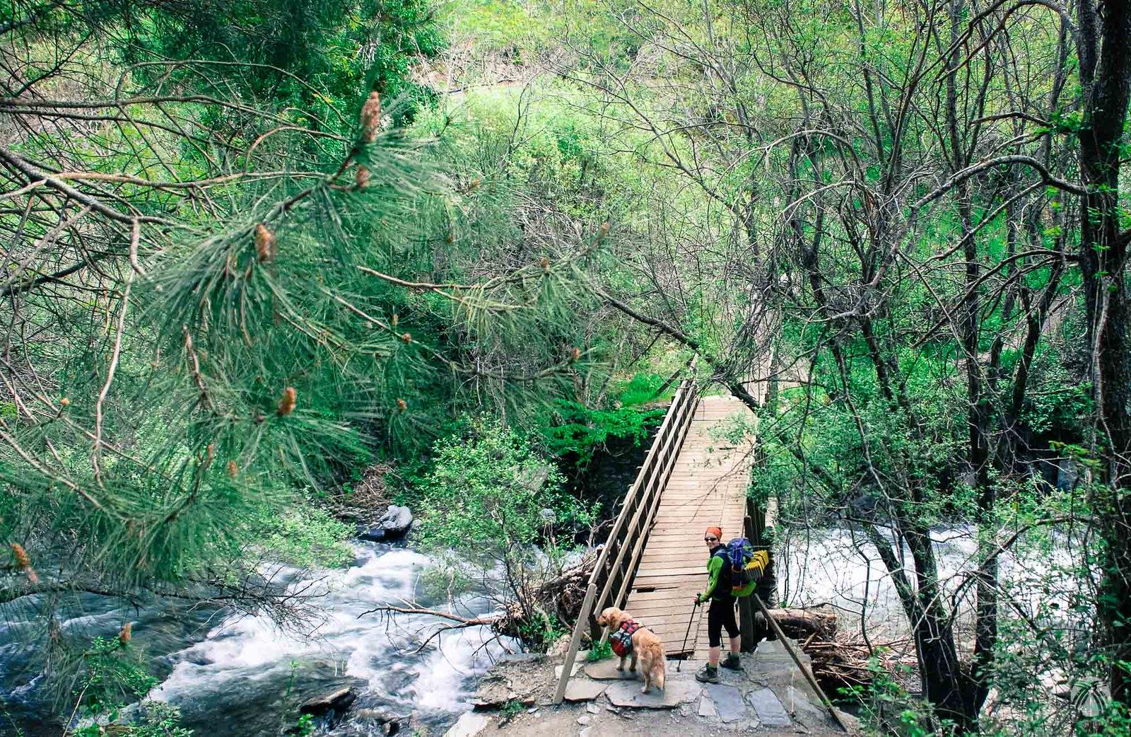 Puente de los Burros. Río Genil