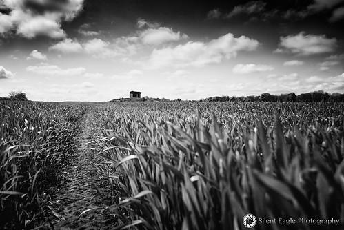 bw monument clouds canon landscape photography colours silent eagle farm north tyne wear east half sep penshaw copyright© silenteaglephotography silenteagle09