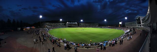 Cricket After Dark