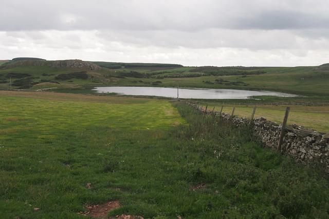 The Berwickshire coast path near Dowlaw