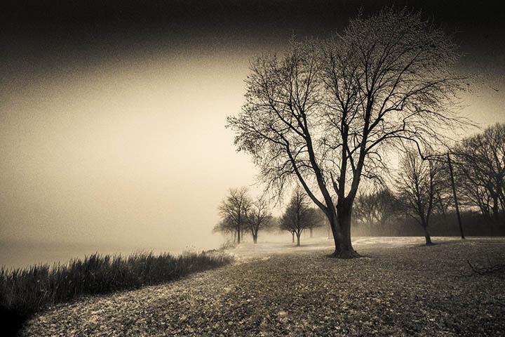 Hushed Stillness