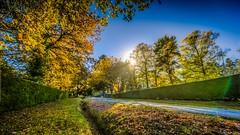 Mt Macedon Autumn Colours-24