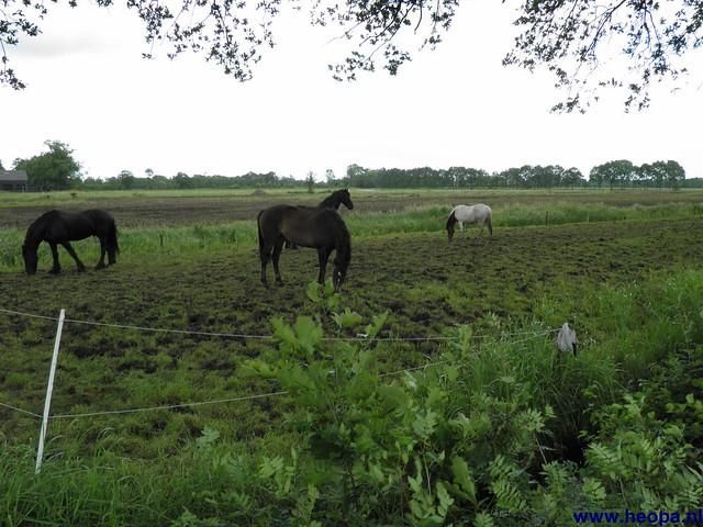 23-06-2012 dag 02 Amersfoort  (70)