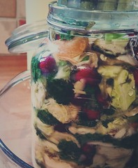Fermenting ... Sauerkraut Cooking Food Cabbage Cranberries Kitchen Food And Drink Close-up Healthy Eating Indoors  Winter капуста клюква кухня банка Jar Comida Casera