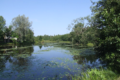 estonia jõgevacounty palamuseparish jõgevamaakond palamusevald panoramio