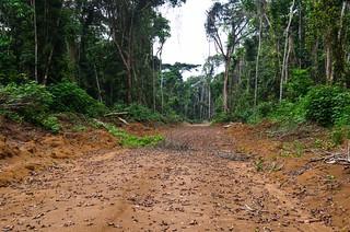 Roads of Lekoumou province, Congo | by jbdodane