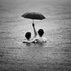 rainshadow by aliza razell