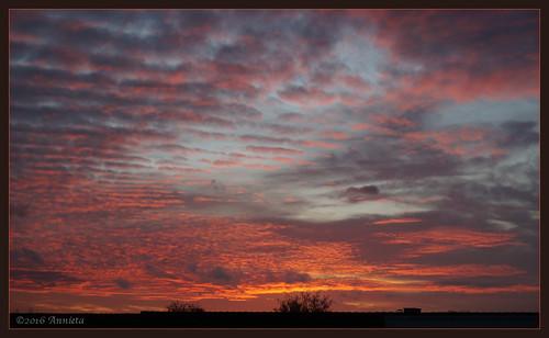 annieta november 2016 sony a6000 nederland netherlands sunset zonsondergang lucht sky fire ciel rood rouge red allrightsreserved usingthispicturewithoutpermissionisillegal goldenhour