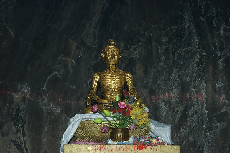 The Buddha as an Ascetic