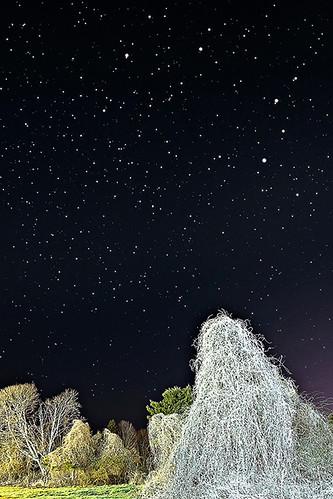sky stars nightlights nightscape connecticut tripod astrophotography astronomy nightsky nightphoto starrynight nightlandscape canonef1635mmf28liiusm canonef1635mm astrometrydotnet:status=solved canonastrophotography leoconstellation tripodastrophotography astrophotographyconnecticut astronomyconnecticut tourismastrophotography leoconstellationastrophotography mysticseaportastronomy nightscapeastrophotography constellationastrophotography constellationtripodphoto astrometrydotnet:id=nova275866