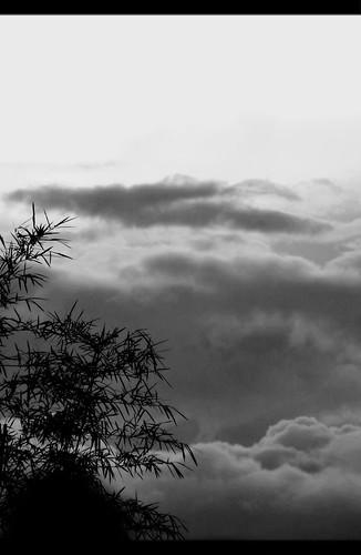 sunset sky bw silhouette clouds blackwhite shadows bamboo rizal antipolo gc100 flickrandroidapp:filter=none samsunggalaxycamera lorescountryexecutivehomes