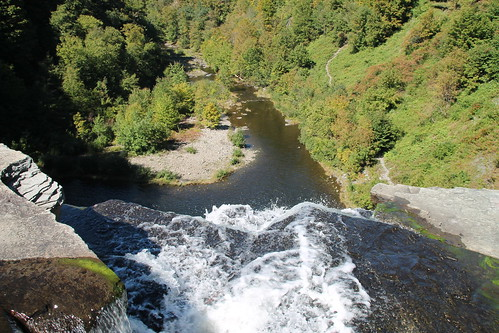 cliff water beautiful forest river fishing famous salmon falls valley