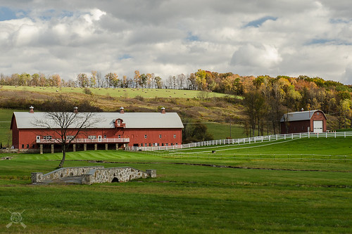 2016 dallaspa fall fallfoliage farm nikon pa pennsylvania barn redbarn horsefarm backmountain