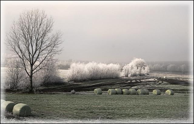 Paesaggi padani- inverno