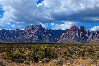 Red Rock Canyon | by sharonjanssens