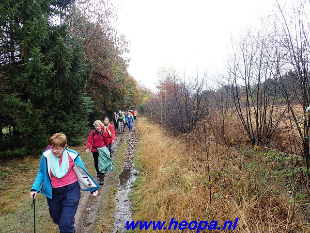 2016-11-16    3e Rondje-WolfHeze   25 Km  (45)