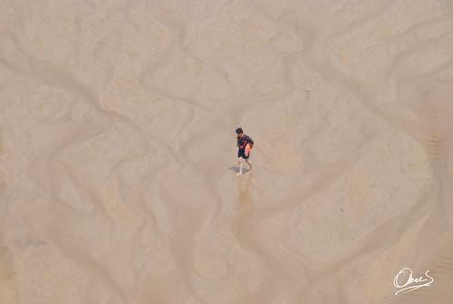 Vigilante en la Playa Ñora   by Oscar F. Hevia