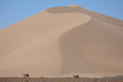 mongolia gobidesert gobigurvansaikhannationalpark allscience2013