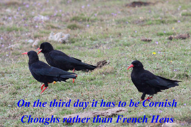 On the third day.....