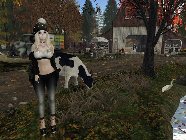 Twisted Farm Girl