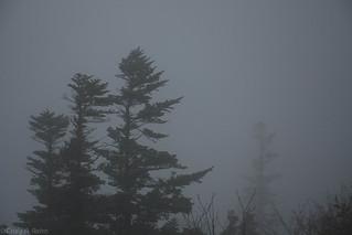 Dragon Peak in the Fog   by craig.rohn