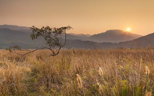 sunset canon landscape hongkong 5dmarkii