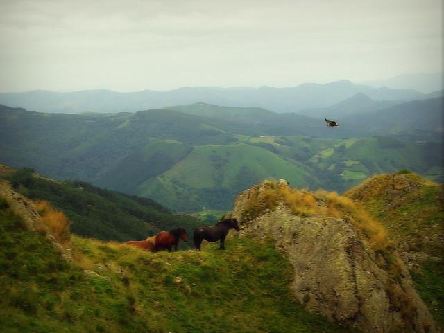 El paisaje soñado