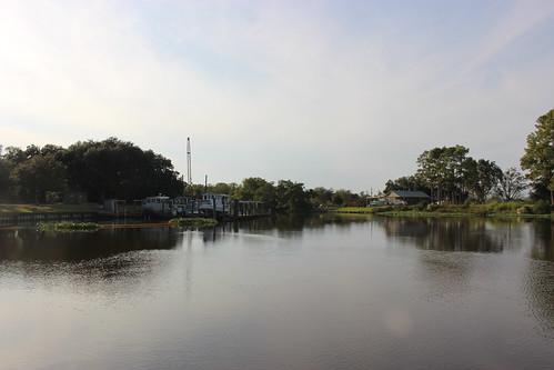 bayou river averyisland louisiana