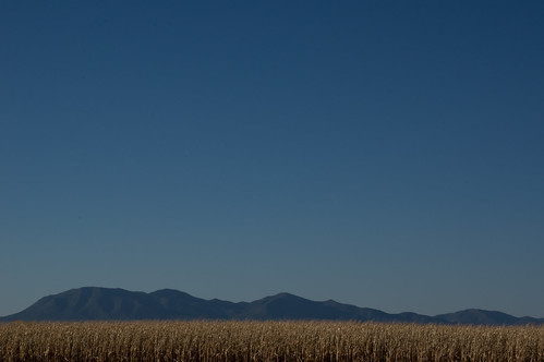 landscape nm moriarty