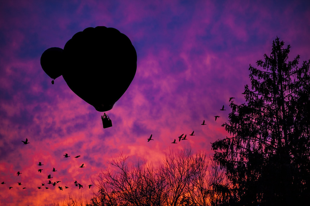 Balloons and Birds in a Fiery Sky