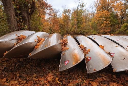 autumn landscape nj trees princeton drcanal leaves fall canoes intimatelandscape newjersey unitedstates us