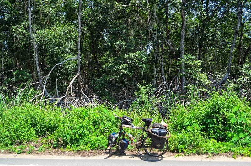 Day453-Bike-140130