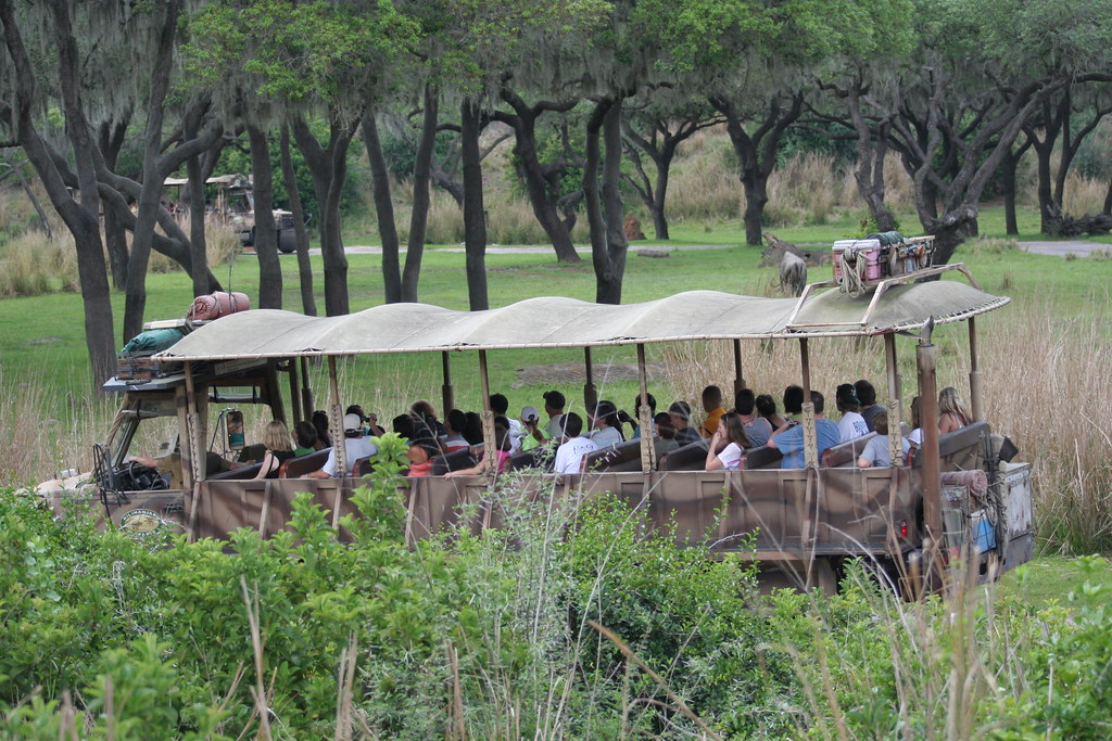 Kilimanjaro Safari - Animal Kingdom - Walt Disney World
