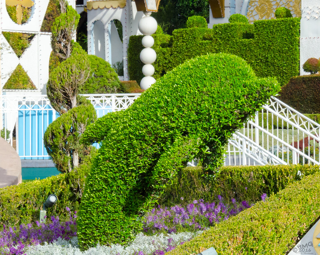 Dolphin Topiary Kevin Mg Flickr