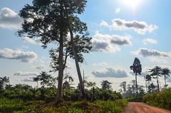 Parque nacional del Monte Péko