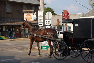 Amish Carriage | by ralpe