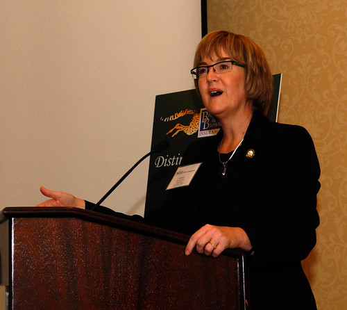2013 Brown and Brown Distinguished Speaker Series: Sandy Lerner