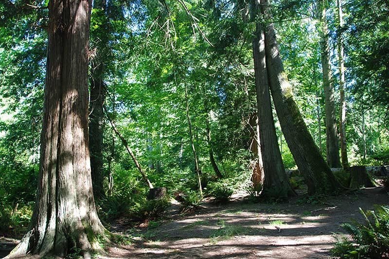 Mouat Park, Ganges, Saltspring Island, Gulf Islands National Park, British Columbia, Canada