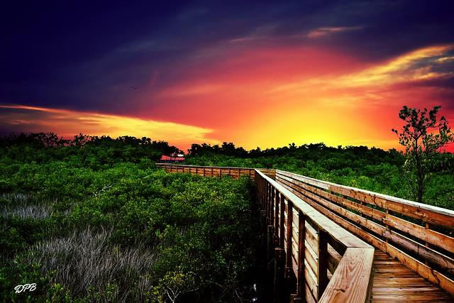 A colorful walk...