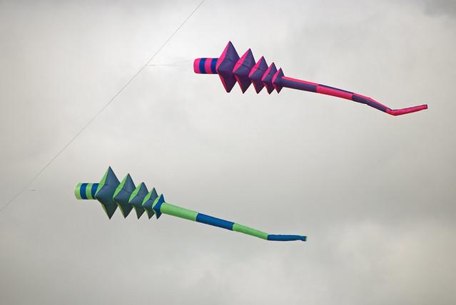Kites, De Haan