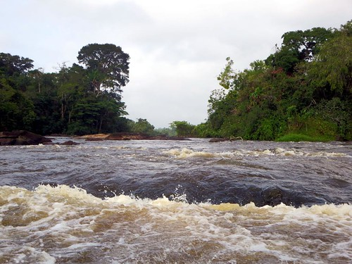 nature river resort rapids suriname anaula ferulassi
