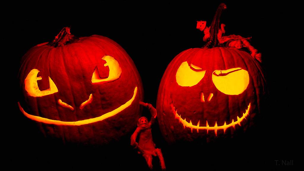 Pumpkin Friends
