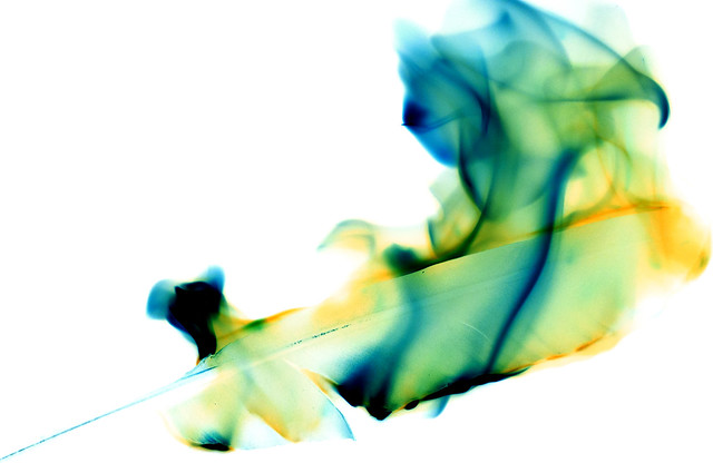 The Phoenix Feather Negative Edit
