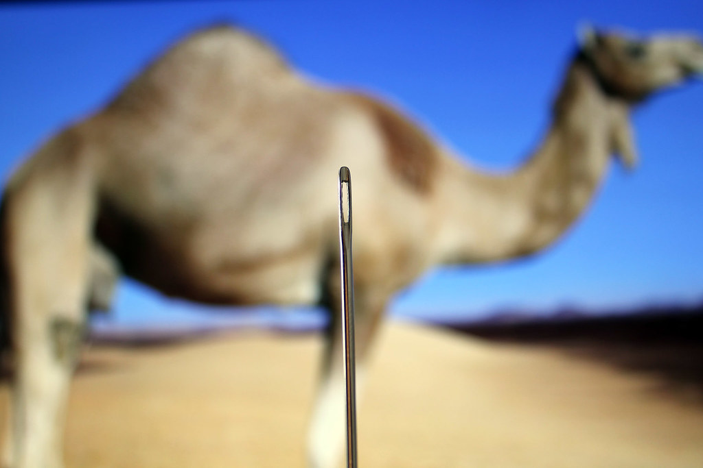 can you see the camel through the eye of the needle! | Flickr